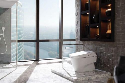 One Piece Toilets Are Stylish Easier To Clean But More Expensive In The Photo Toto Neorest Costs Almost 5000