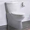 miseno dual flush toilet review of a toilet with low water use