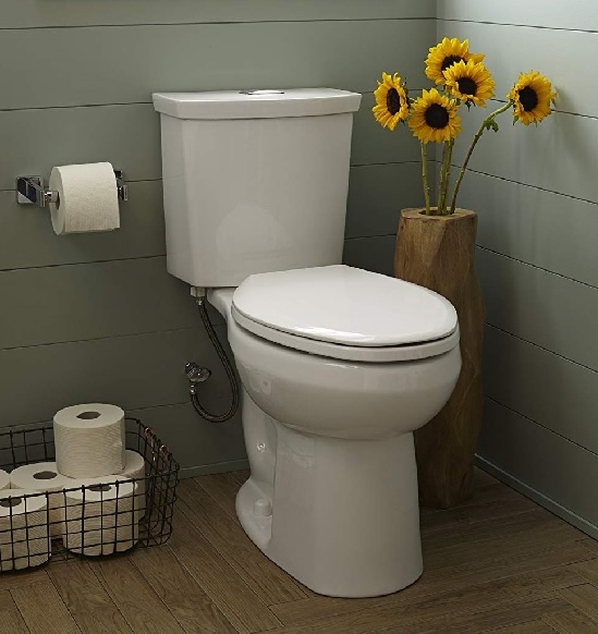 what's the difference between comfort height and right height toilets by american standard